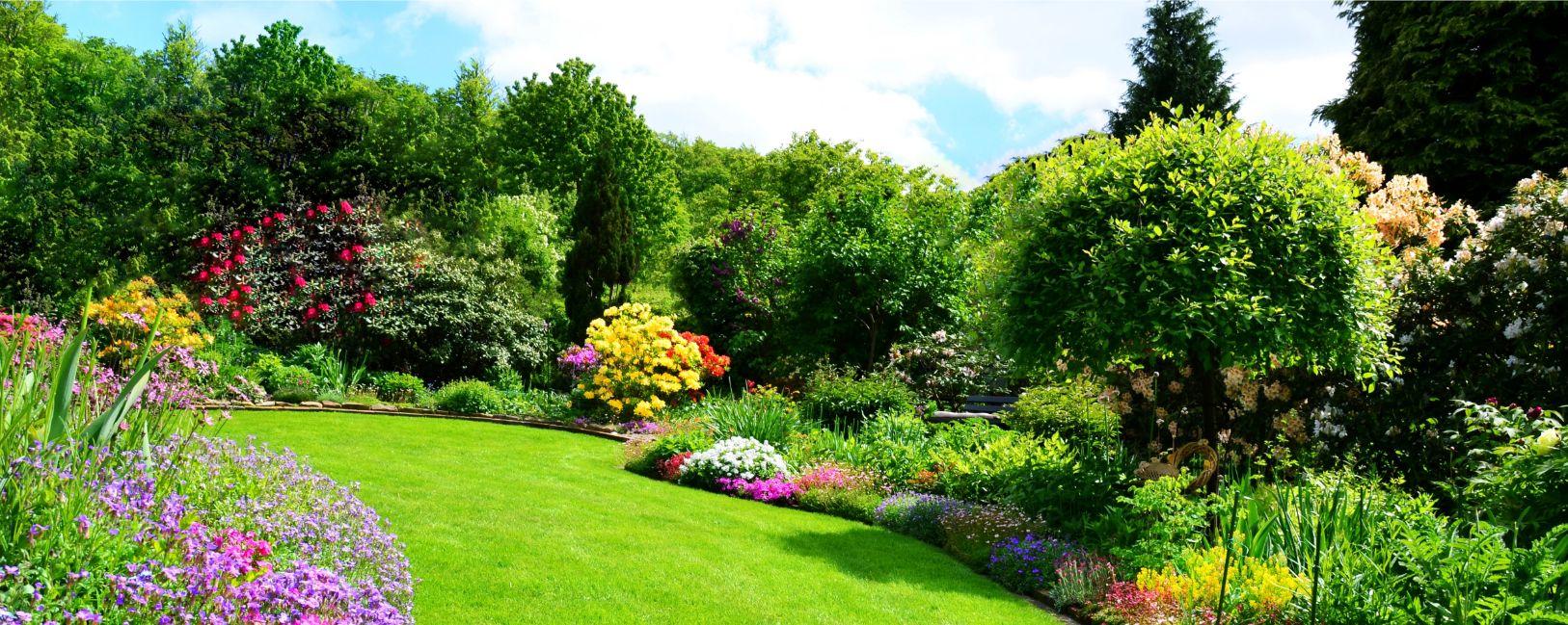 Landscape design Madison