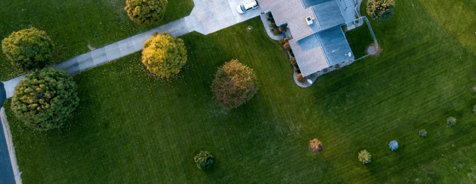 Lawn Care Madison WI